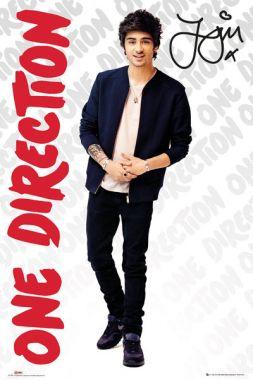 One Direction, Zayn