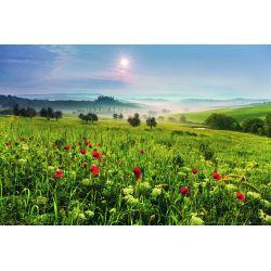 Красоты природы