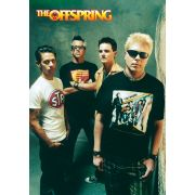 Музыка, The Offspring