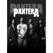 Музыка, Pantera